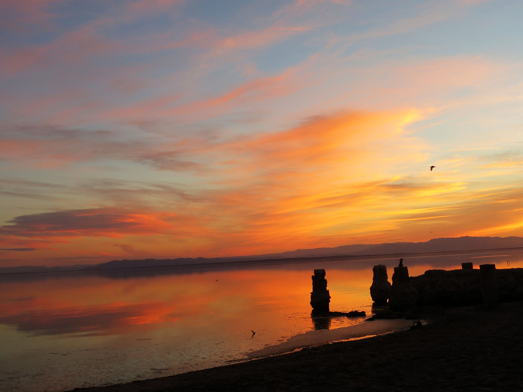 The Salton Sea - California // TheOneWhereIMoveToCalifornia.weebly.com